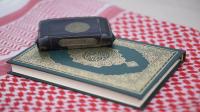 Surah An-Naḥl Ayat 66, 68-69 : Bacaan, Terjemah, Mufradat dan Isi Kandungan